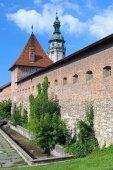 Porta del Hlyniany di Bernardine Monastery in Lviv, Ucraina — Foto Stock