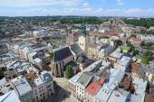 View of Latin Cathedral from the tower of Lviv City Hall, Ukraine — Stock Photo