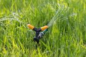 Zalévání zahrady trávy — Stock fotografie
