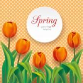 Orange tulips on polka dots background — Wektor stockowy