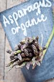Asparagus on a blackboard — Stock Photo