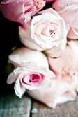Bunch of pink roses close up — Stock Photo