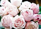 Ramo de rosas rosadas de cerca — Foto de Stock