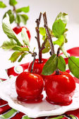 Candied apples on a bunch stick — Стоковое фото
