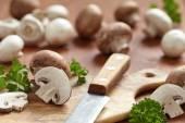 Fresh brown and white mushrooms — Stock Photo