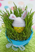 Easter decoration with cute egg in bunny hat — Stock Photo