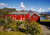 Lofoten, norvège — Photo