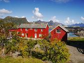 Lofoten islands, Norway — Foto de Stock