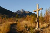 Catholic wooden cross in autumn landscape — Stockfoto