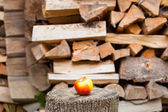 Ripe apple on a background of the woodpile — Stock Photo