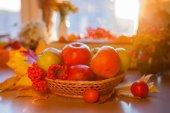 Červené pečená jablka s podzimním listím a rowan — Stock fotografie
