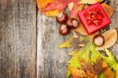 Autumn background with red gift box — Stock Photo