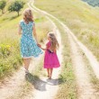 Mother and daughter walking  in the  field — Stock Photo #66594269