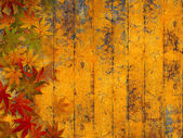Grunge autumn background with fall leaves — Stock Photo