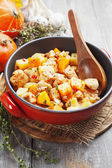 Chicken stew with pumpkin, potatoes and spices — Стоковое фото