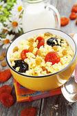 Millet porridge with dried fruit — Stock Photo