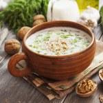 Tarator, bulgarian sour milk soup — Stock Photo #73551427