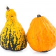Ornamental Gourds — Stock Photo #53780023