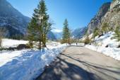 Winter mountain landscape on a sunny day with fir trees. Winter road in the forest. — Stockfoto