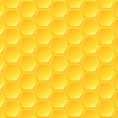 Honey beehive — Wektor stockowy