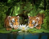 Two tigers sniffing lotus — Stock Photo
