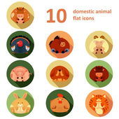 Flat icons with animals — Stock Vector