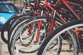 Bike rental — Stock Photo