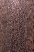 Bronze snake pattern imitation — Stock Photo