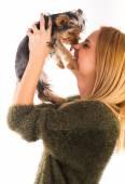 Dog kisses woman — 图库照片