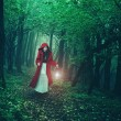 Red Riding Hood in woods — Stock Photo #57368553