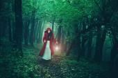 Red Riding Hood in woods — Stock Photo