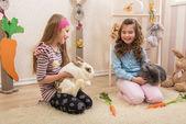 Little girls stroking the rabbits — Stock Photo