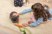 Little girl loves live rabbit — Stock Photo