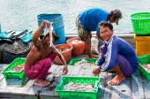 Thai fishermen sorting day capture at Baan AoYai Salad fishing village on Koh Kood Island, Thailand — Stock Photo