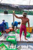 Thai fishermen sorting day capture at Baan AoYai Salad fishing village on Koh Kood Island, Thailand — Stock Photo