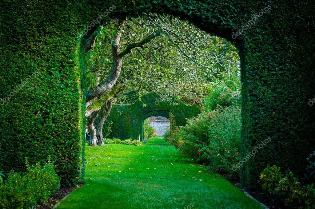 Archi di pianta verde nel giardino di campagna inglese for Piani di campagna inglese