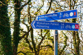 Closeup on tourist Sign posts in village of Ravenscar, UK — Stock Photo
