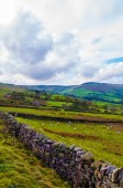 Green Countryside landscape in Yorkshire Dales National Park, United Kingdom — Foto Stock