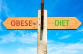 Obese versus Diet — Stock Photo