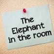 The Elephant in the room — Stock Photo #68798839