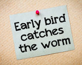 Early bird catches the worm — Stock Photo