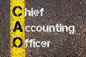 Business Acronym CAO as Chief Accounting Officer — Stock Photo
