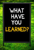 WHAT HAVE YOU LEARNED? — Stock Photo