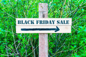 BLACK FRIDAY SALE Directional sign — Stock Photo