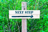NEXT STEP Directional sign — Stock Photo