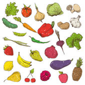 Vegetables and fruits hand drawn — Wektor stockowy
