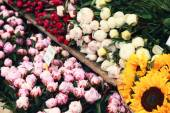 Flowers on a market — Stock Photo