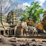 Abandoned temple Ta Prohm in Angkor Wat, Cambodia — Stock Photo #70404293