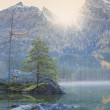 Lake with trees with sun between the mountains — Stock Photo #58621979