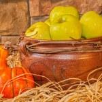 Autumn Harvest — Stock Photo #56841013